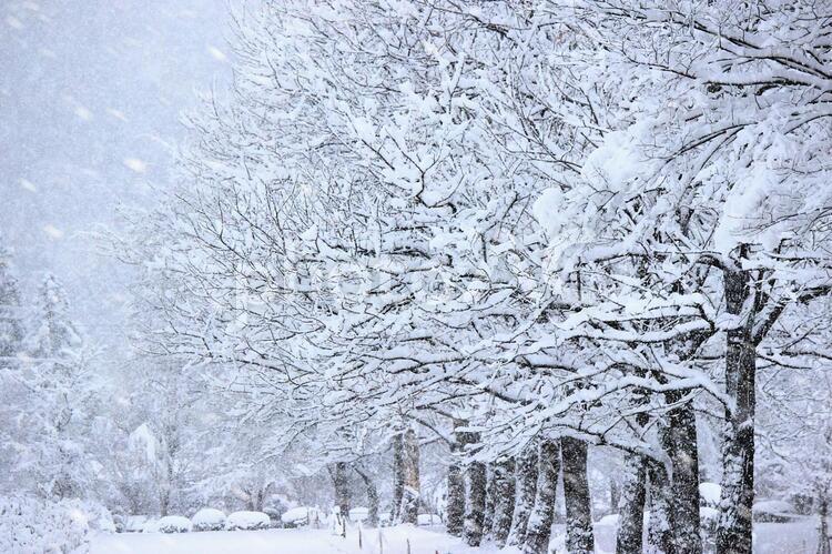 冬景色_01