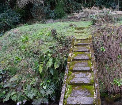 풍경 위험한 다리 2