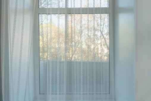 Morning windowsill