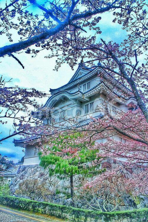 大多喜城の写真