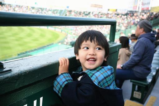A boy watching baseball