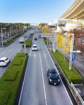 公路和汽車1208