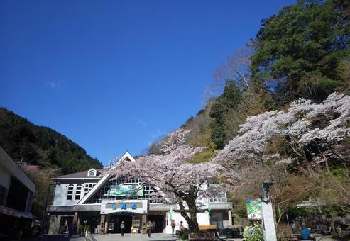 카오산 清滝 역전 (4 월)