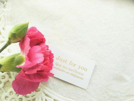 Carnations and message cards Mother's Day gifts
