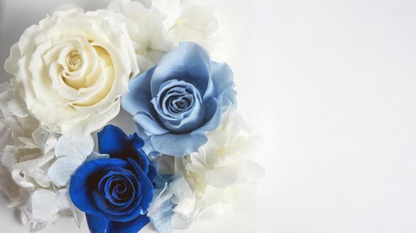 파란색과 흰색 장미 꽃다발 # 3