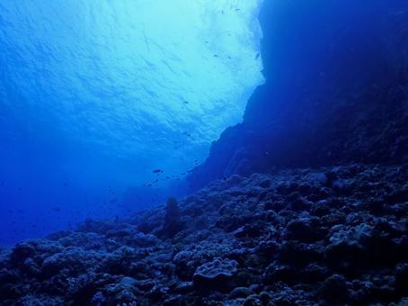 Mysterious undersea, Kerama Blue / Kerama Islands (Okinawa)