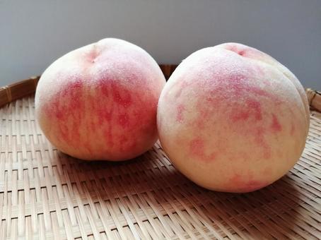 Peach Kanoiwa White Peach 5
