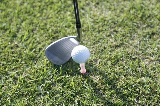 Grass club and golf ball 12