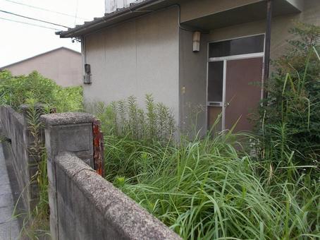 進不去的雜草叢生的花園