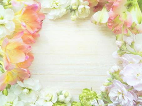 Stock and Freesia Spring Light Botanical Frame