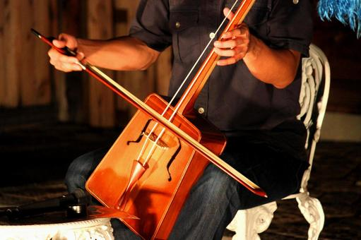 馬頭琴托巴托金弦樂器
