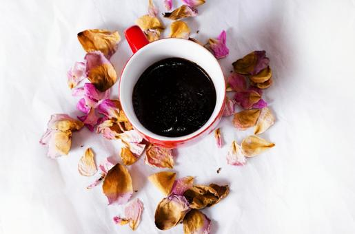 Dry Flower and Cup