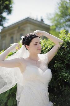 婚礼331