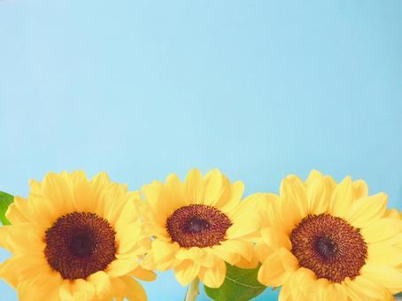 Sunflower wallpaper (pastel style 1)