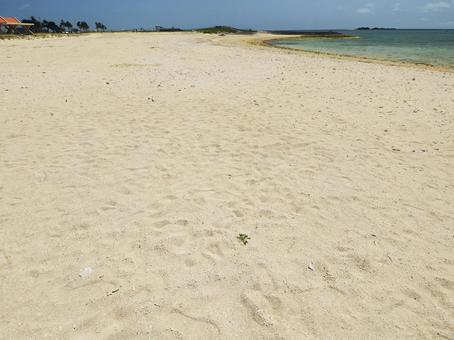 토요 해변 공원 오리온 ECO 빌라 SUN 해변 모래 해변 (오키나와 현 도미 구스 크시 토요)