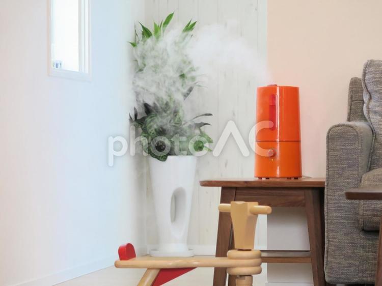 観葉植物と加湿器の写真