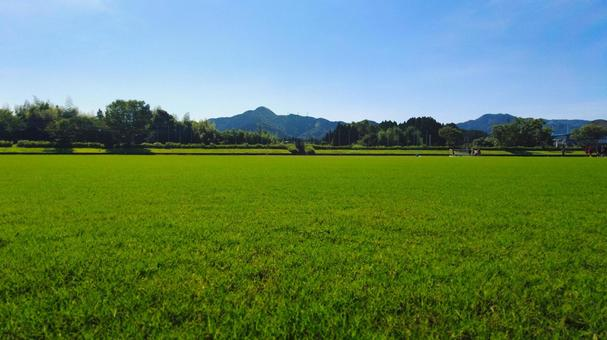 Lawn soccer ground view