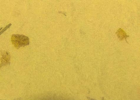 日本紙黃色落葉