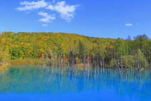 Blue pond and autumn leaves 2