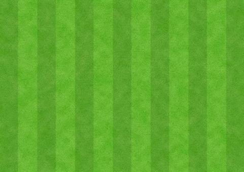 Texture 【Football lawn】