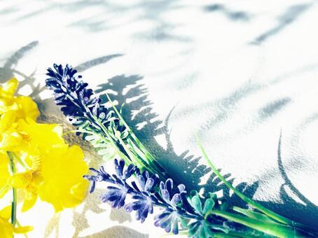 Lavender and Oncidium background