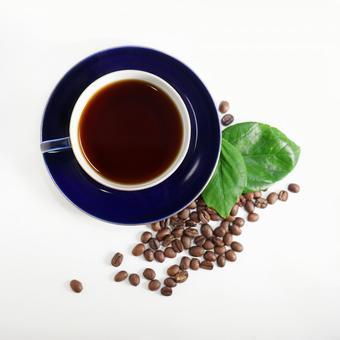 커피 커피와 커피 콩 (바로)