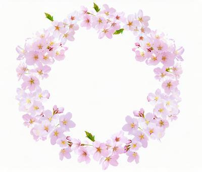 Cherry wreath (transparent)