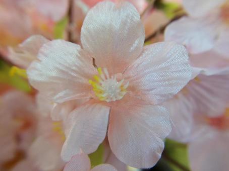 벚꽃의 조화