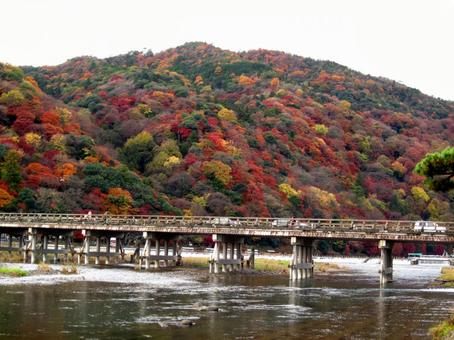 Autumn Kyoto Arashiyama Autumn leaves Togetsu Bridge