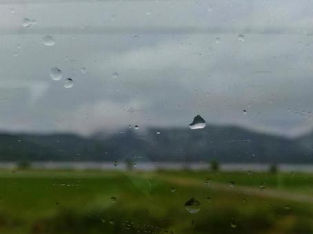 비오는 날