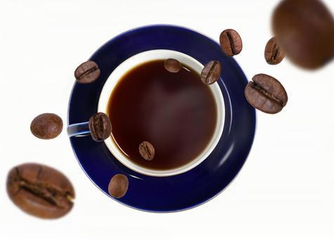 커피 내리는 커피 콩 (콩 시선)