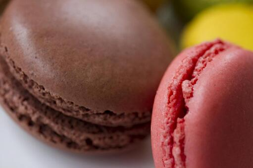 Colorful Macaron _ 14