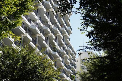 Transaction image of used condominiums