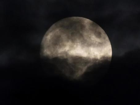 Dark moonlit night