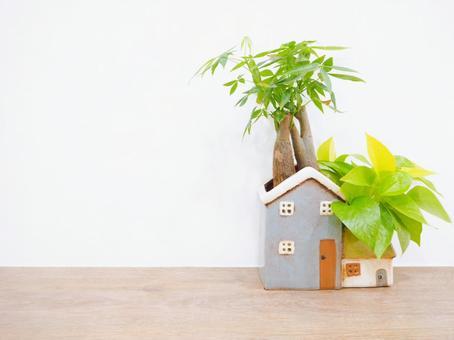 葉子植物和房屋形狀的可愛花盆