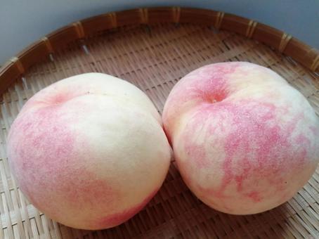 Peach Kanoiwa White Peach 6