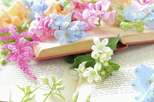 꽃과 양서