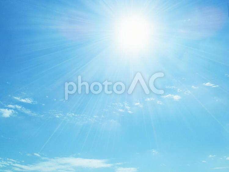 優しい日差しの写真