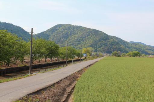 Rural path