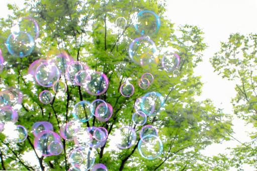 Soap bubbles # 4