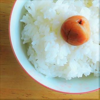 Rice and pickled plum # 2