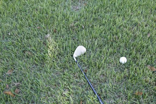 Grass Club and Golf Ball 1