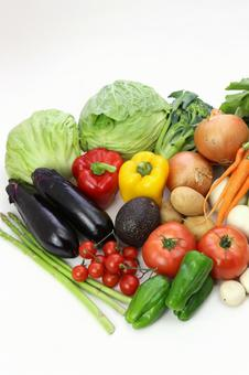 Variety of vegetables 5