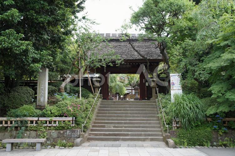 深大寺の写真