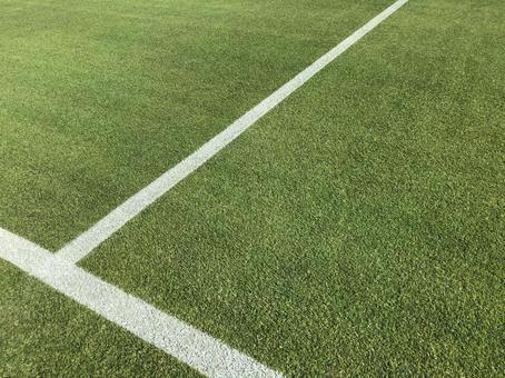 Sports lawn ground white line green line