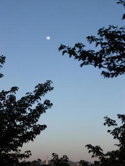 Dusk and moon