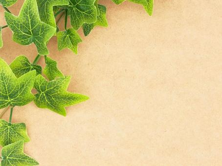 Natural background material of ivy and wood