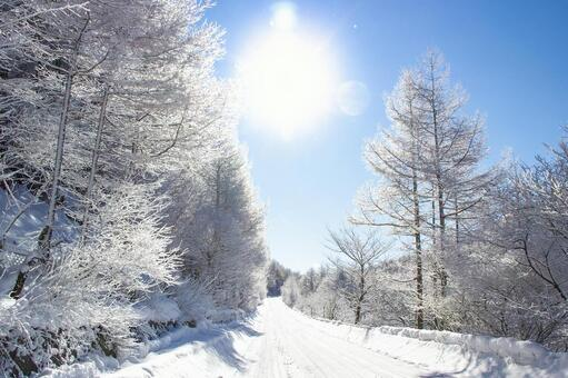 Snow road Winterscape color 180901