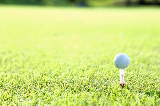 Grass and golf ball 16
