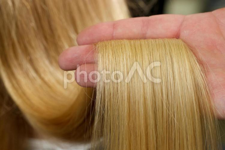 美しい髪8の写真